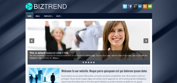 BizTrend - free wordpress themes