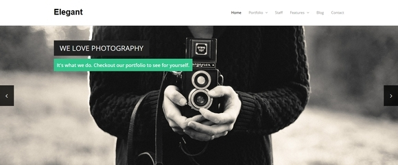 Elegant - free wordpress themes 2014