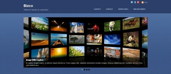 Bizco - wordpress theme
