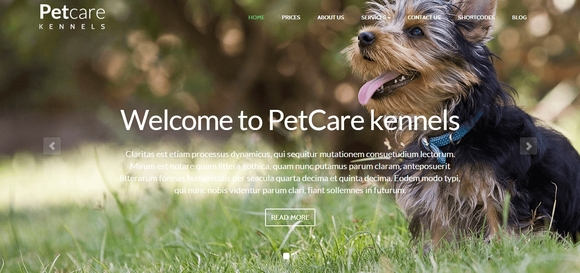 Pet Care - free wordpress themes
