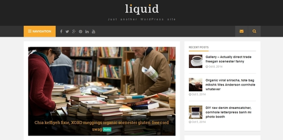 Liquid - wordpress themes