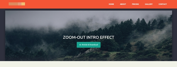 Zoom-Out Intro Effect