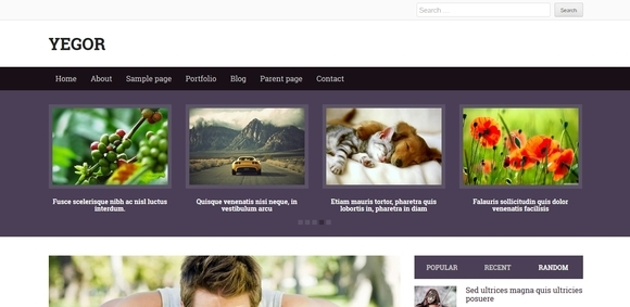 Yegor - free wordpress themes 2014