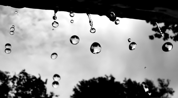 Raindrops - wallpapers download