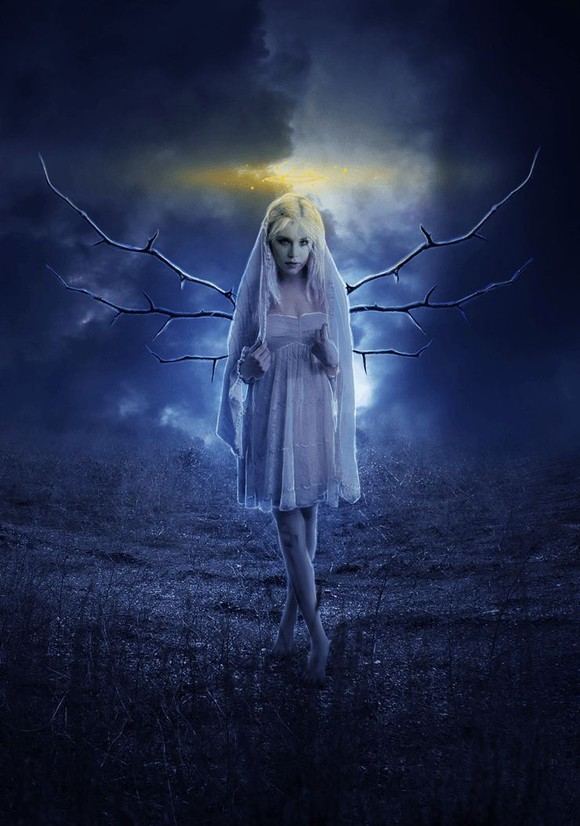 Beautiful Moonlight Angel