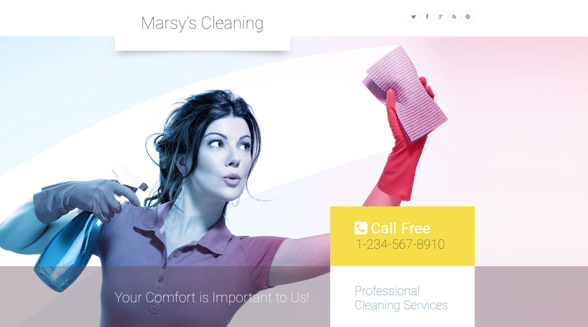 Mary's cleaning - word press theme for women