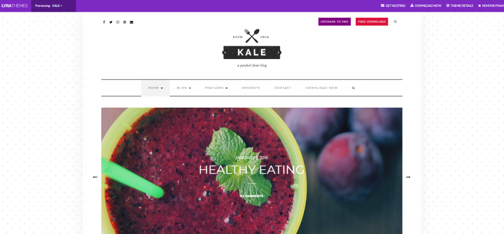 kale wordpress theme for food blog