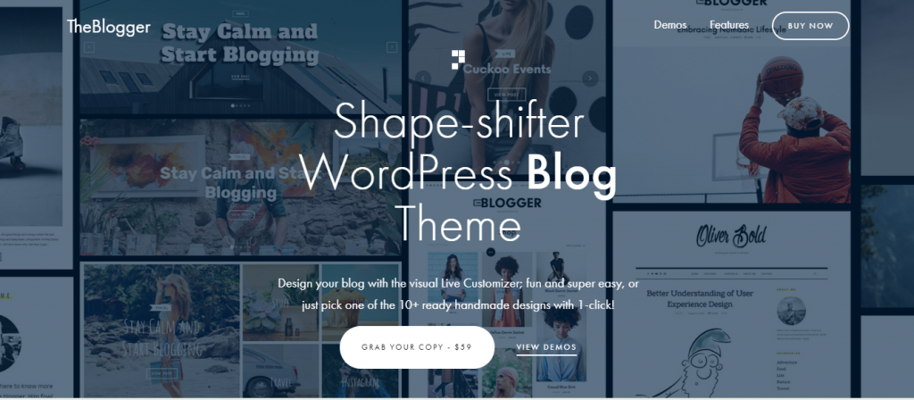the blogger wordpress theme