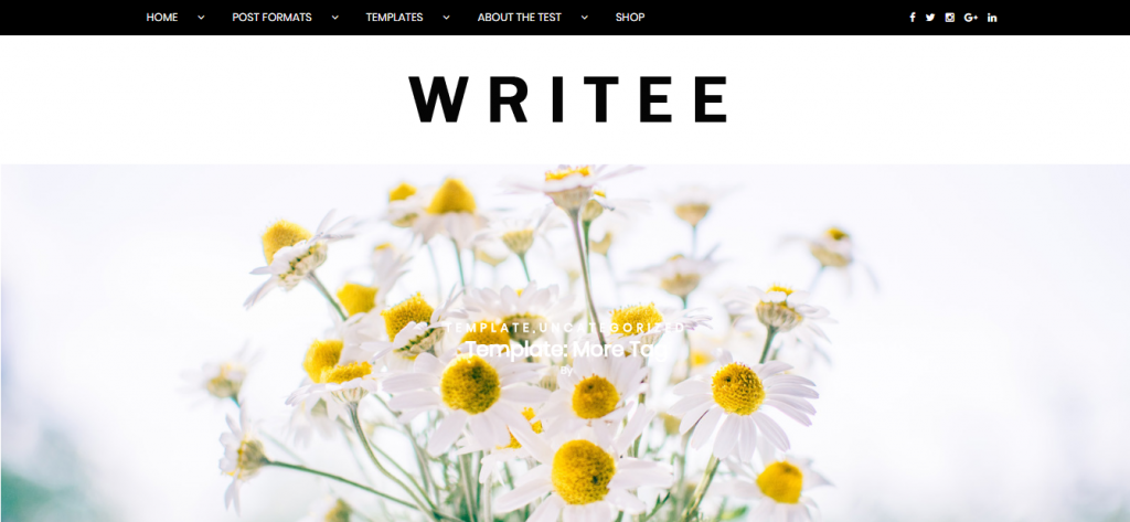 writee wordpress theme