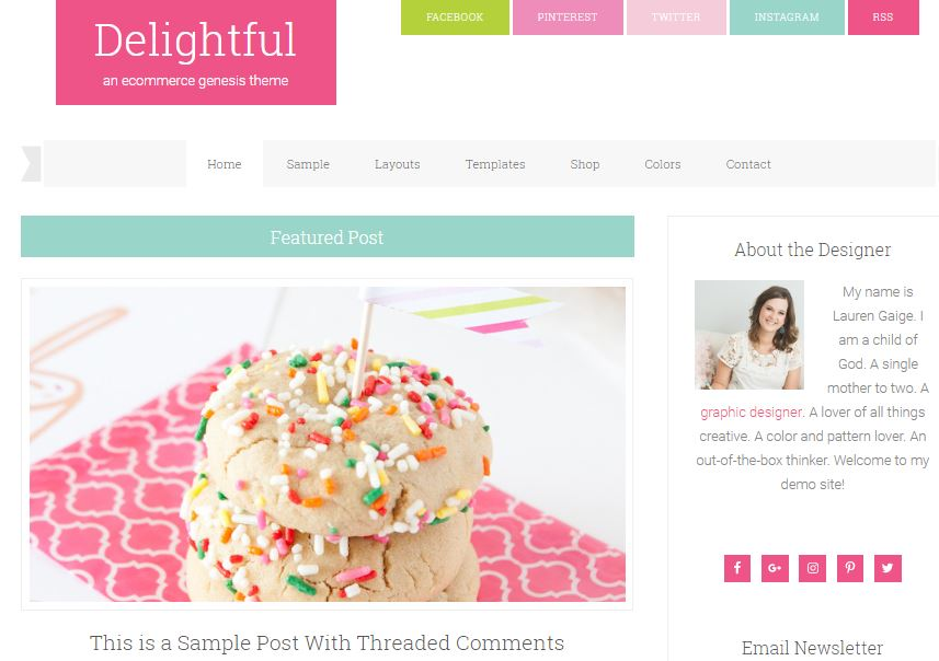 delightful pro wordpress theme