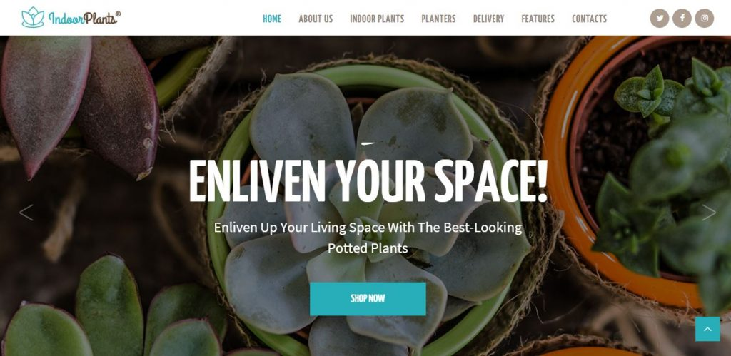 indoor plants wordpress theme