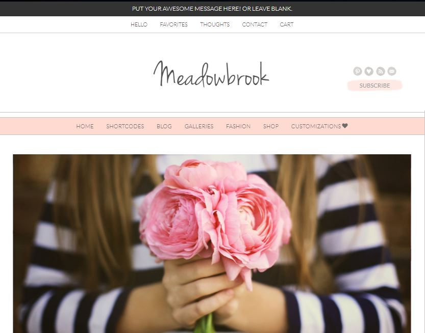 meadowbrook wordpress theme
