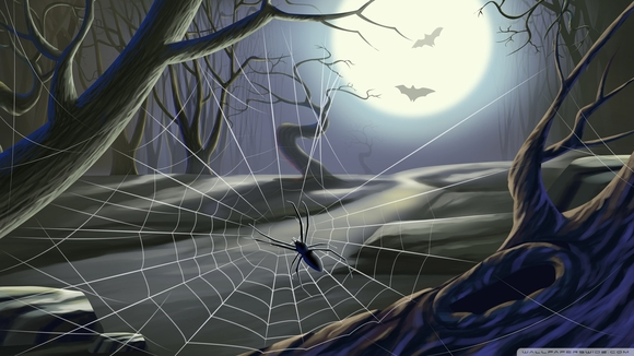 Spider Web Full Moon Hallowmas - computer wallpaper